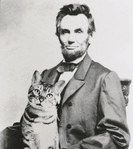 president abraham lincoln with tabby